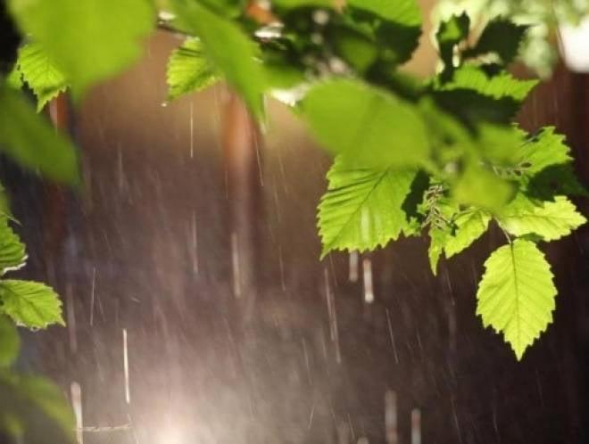 Жители Мордовии рискуют попасть под дождь