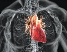 Студенты-медики из Мордовии лучше всех в Поволжье ушивают раны на сердце