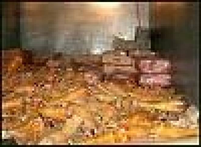Больше тонны сомнительных мясопродуктов могли попасть в магазины Ковылкино
