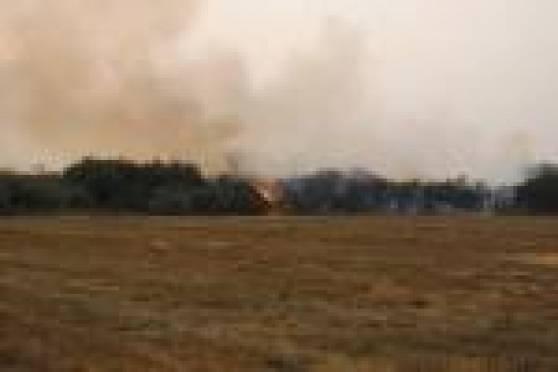 На территории Мордовии возник новый крупный лесной пожар