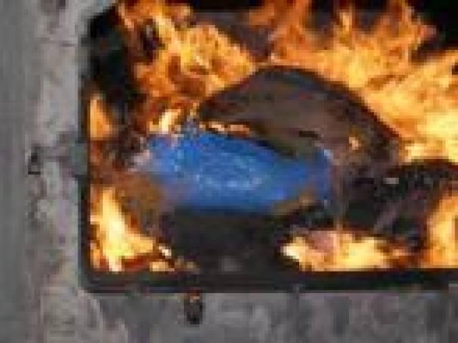 В Мордовии сожжено наркотиков на 2 миллиона рублей