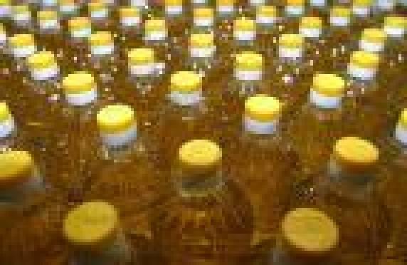 В Мордовии может быть построен завод по производству рапсового масла
