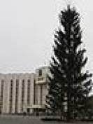 Главная новогодняя елка в Саранске установлена с третьей попытки