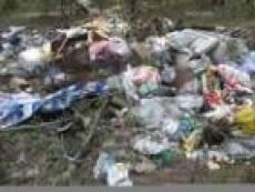 В Саранске объявлена война несанкционированным мусорным свалкам