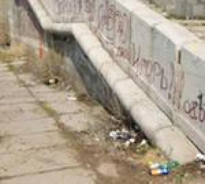 Власти Саранска признали активность коммунальщиков в рамках акции «Чистый город» недостаточной