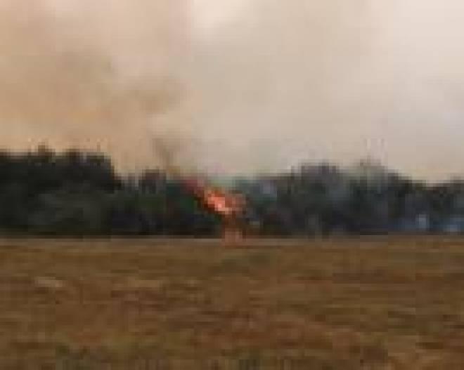 В Мордовии остался непотушенным лишь один крупный лесной пожар