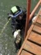 В Саранске «Дельфин» провел день очистки водоемов