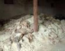 В Чамзинском районе Мордовии обнаружены бесхозные пестициды