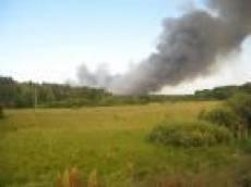В Мордовии уже произошло 178 лесных пожаров
