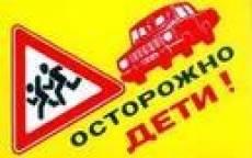 Сотрудники Госавтоинспекции проведут масштабную акцию в районах Мордовии