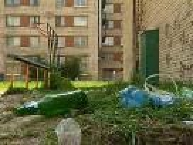 Власти Саранска ужесточат контроль за чистотой города