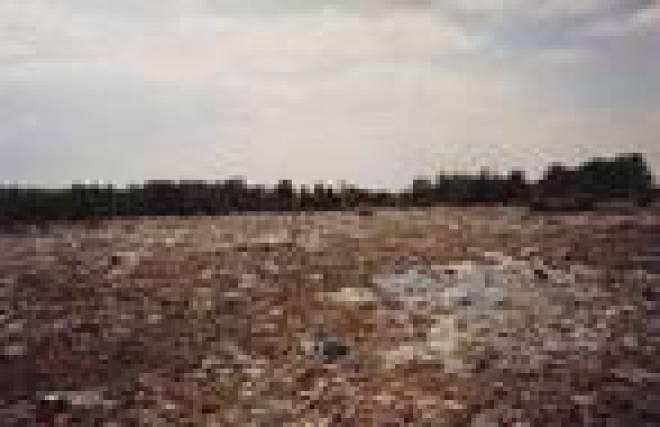 В Атяшевском районе Мордовии  обнаружена свалка бытового мусора