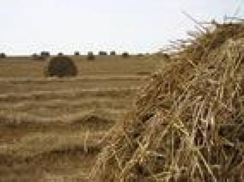 В Мордовии подвели итоги оперативно-профилактической операции «Урожай-2009»