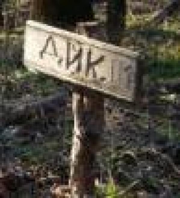 Жители Саранска игнорируют запрет хоронить домашних животных