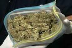 Около 400 грамм марихуаны хранил дома житель Кочкуровского района Мордовии
