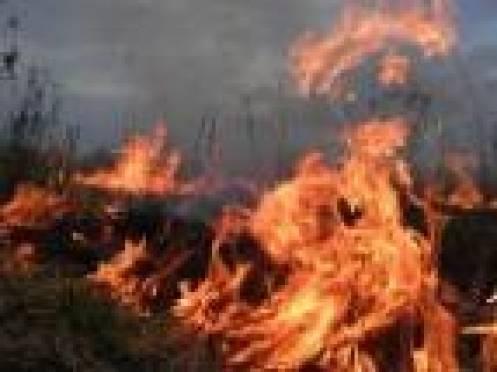 В Торбеевском районе Мордовии поджигание сухой травы стало причиной возгорания трех домов