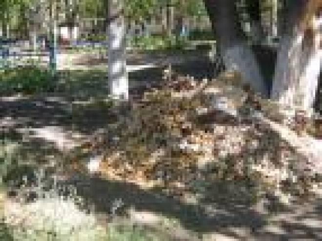 Коммунальные службы Саранска выяснили, что свалки во дворах жилых домов устраивают дворники