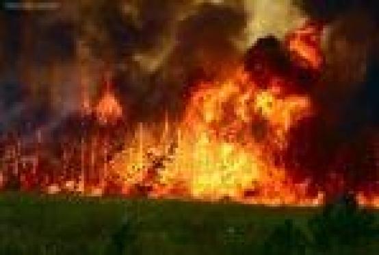 Пожар уничтожил одну из деревень Мордовии почти полностью
