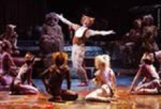 """Молодые хореографы Саранска представят собственную интерпретацию мюзикла """"Кошки"""""""