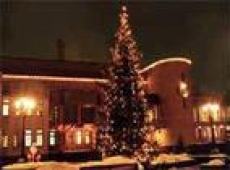 Новогодняя иллюминация в Саранске будет работать до 15 января