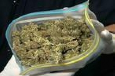 С начала года в Мордовии ликвидированы три наркопритона и изъят почти  килограмм наркотиков