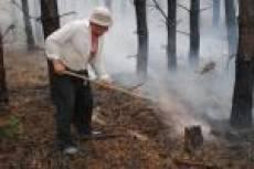 Участники ликвидации лесных пожаров в Мордовии будут поощрены