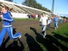 В Мордовии отметят День физкультурника