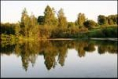 В Мордовии благоустроят Макаровский пруд