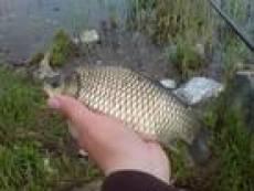 В Мордовии взяты с поличным два рыбных браконьера